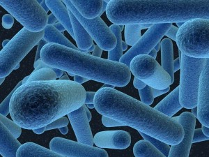 One Person Adds 37 Million Bacteria to a Room