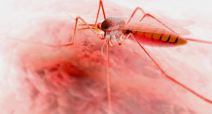 mapping-the-end-of-malaria